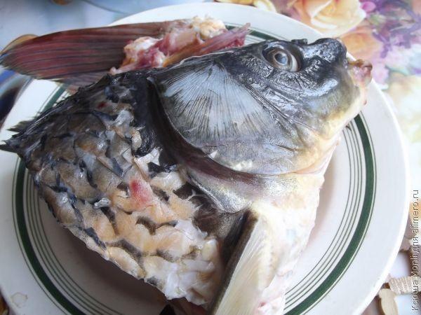 Рыбная юшка «Южная»
