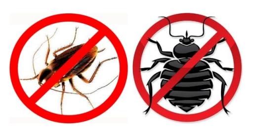 Средства для самостоятельного выведения тараканов и клопов.