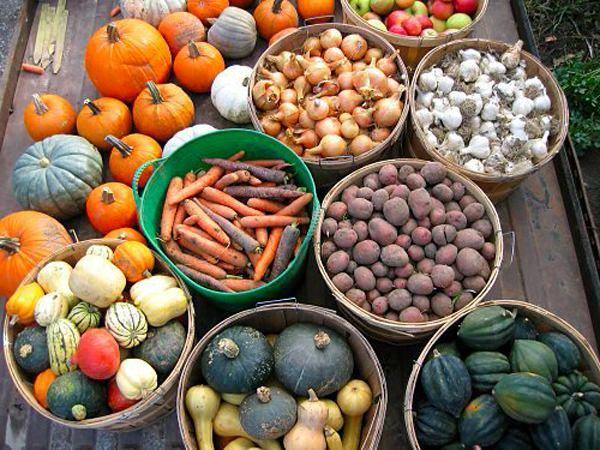 Правильное хранение овощей